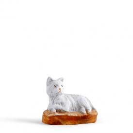 Chat 'blanc'